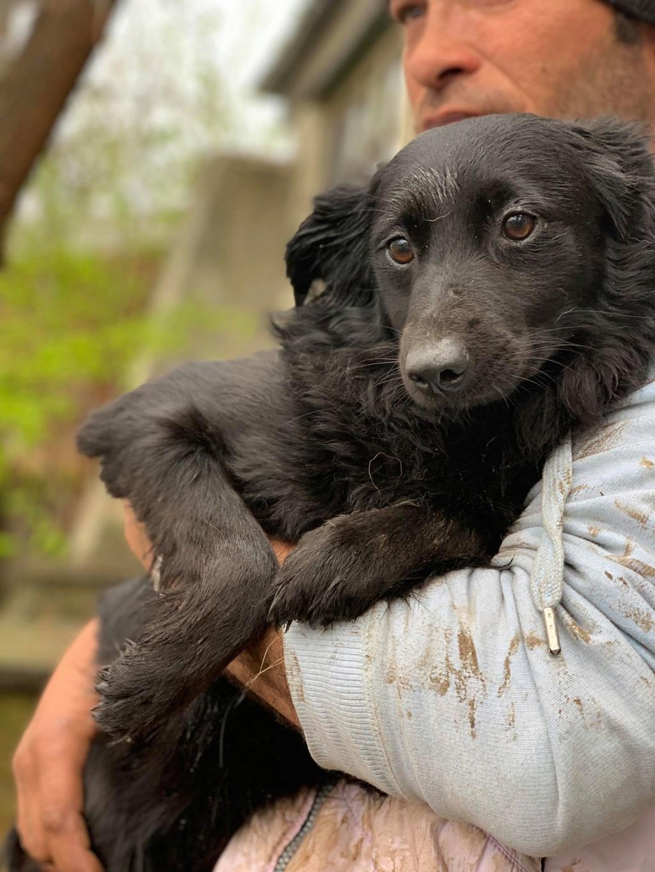 Olga- dans la maison abandonnée à Târgu Frumos 57750810