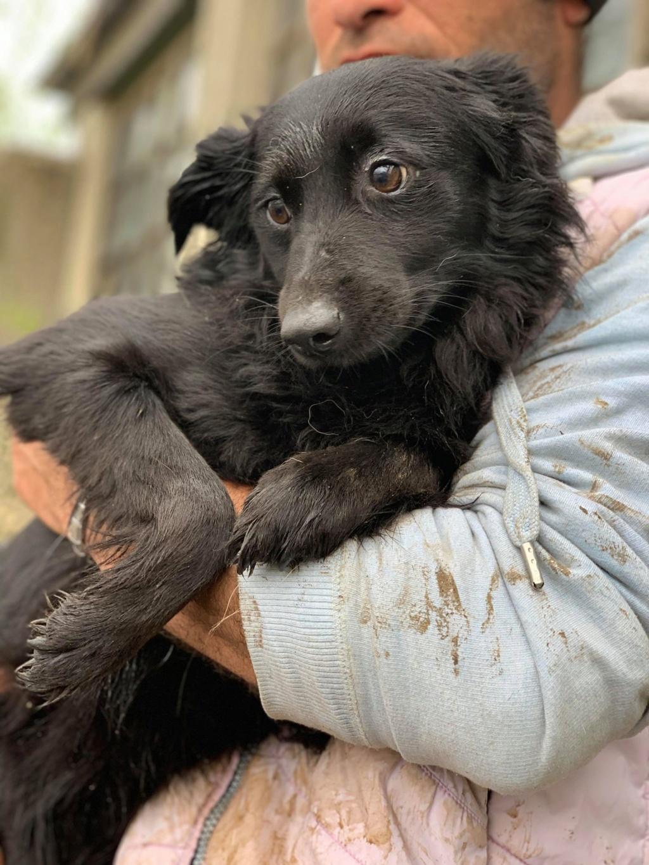 Olga- dans la maison abandonnée à Târgu Frumos 58381410