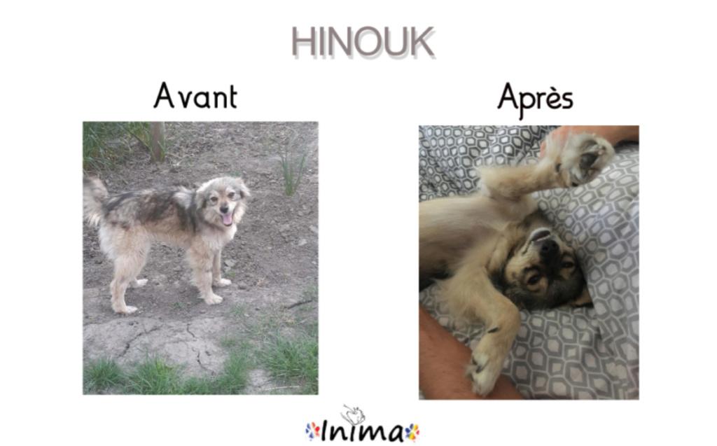 Le résultat du Bonheur : AVANT / APRES 64476510
