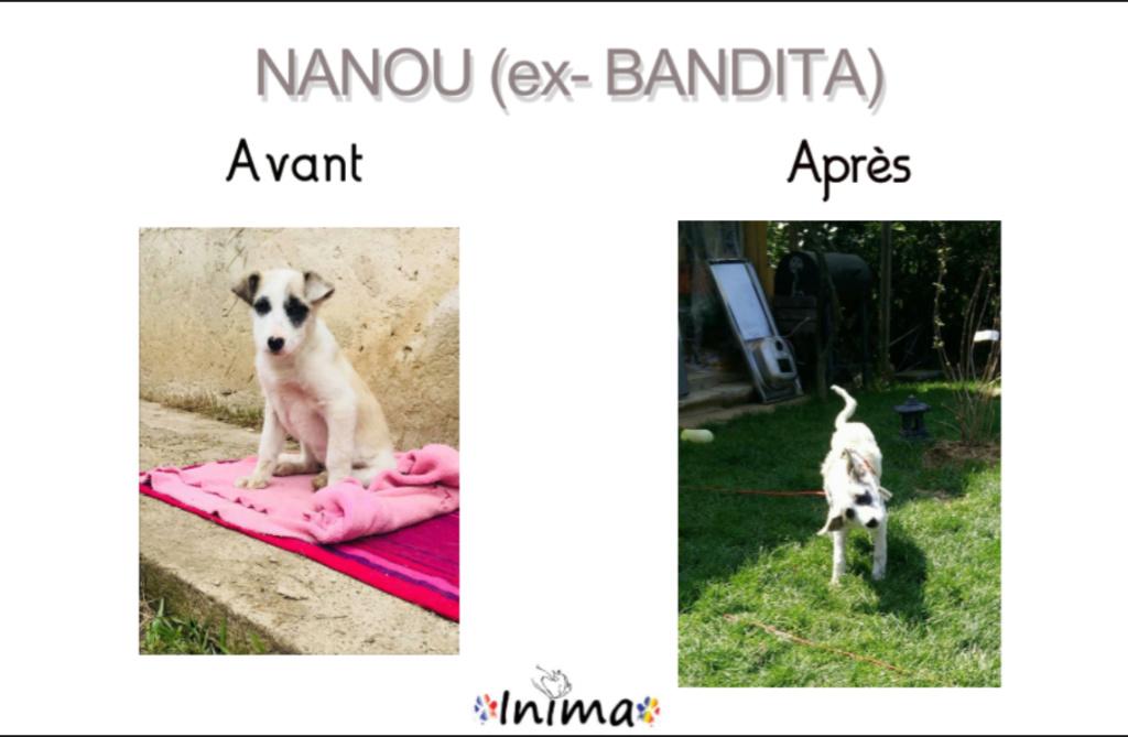 Le résultat du Bonheur : AVANT / APRES 64476610