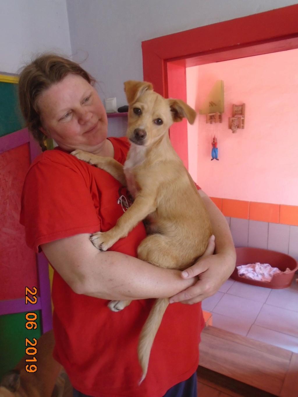 Titus- mâle- refuge d'Arad - réservé adoption 92 65122710