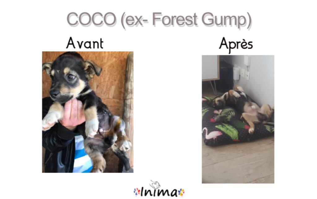Le résultat du Bonheur : AVANT / APRES 65201510