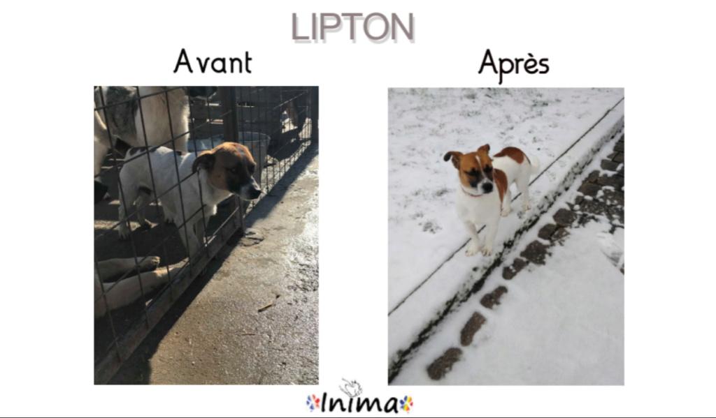 Le résultat du Bonheur : AVANT / APRES 65767010