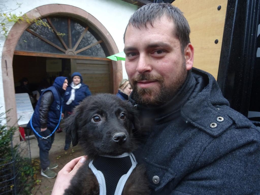 Pixis - mâle - chez Andreea à Târgu Frumos-reservé adoption 68 Dsc00243