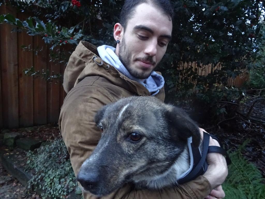 SCRATCH (ex-Toto) - mâle - refuge de Târgu Frumos réservé adoption 67 Dsc00254
