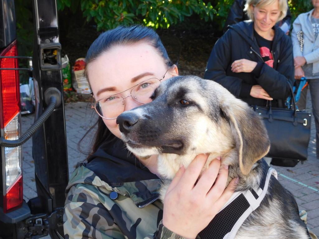 Era (ex-Fergie) - femelle - Târgu Frumos - réservée adoption (57) Dscn4814