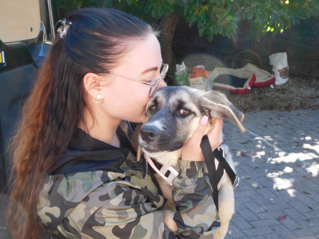 Era (ex-Fergie) - femelle - Târgu Frumos - réservée adoption (57) Dscn4815