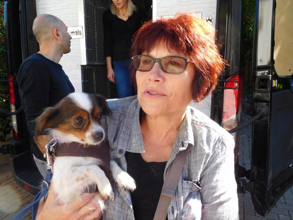 Tessa - femelle martyre - chez Rudy (Iasi) - réservée adoption (Suisse) Dscn4949