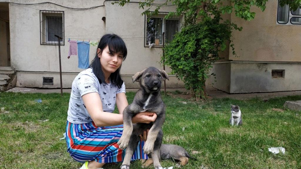 Isis (ex-Missis)- femelle -fourrière de Târgu Frumos - Réservée adoption (94) I_et_m18