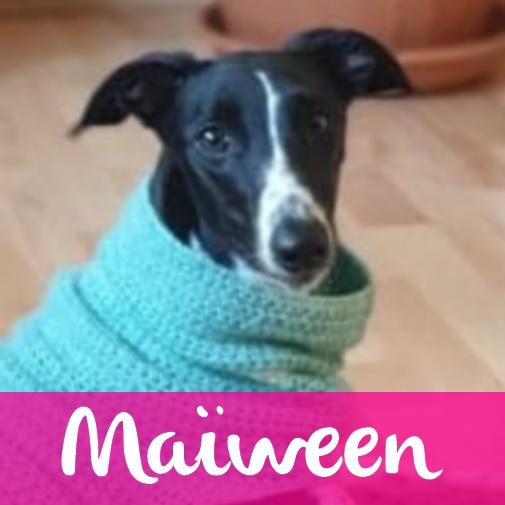 MaiweenF