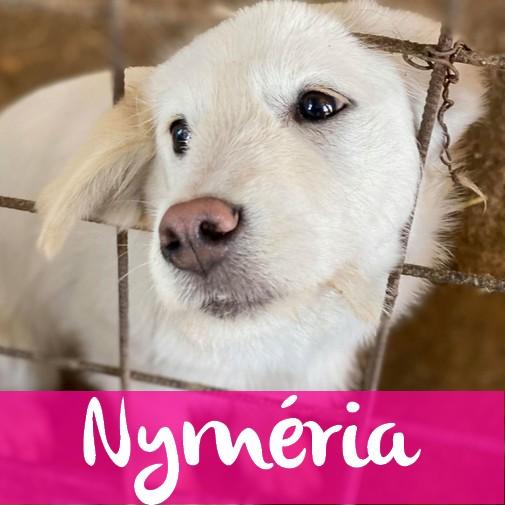NymeriaF