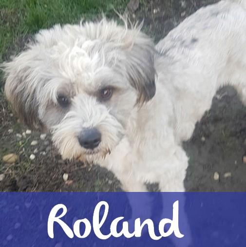 RolandM