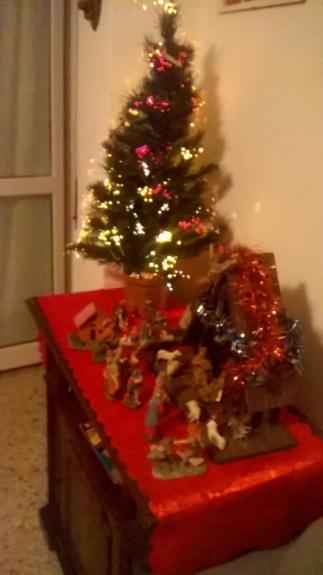 Presepio o albero di Natale? Wp_20110