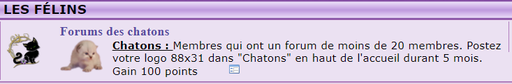 ma pub chaton Forums10