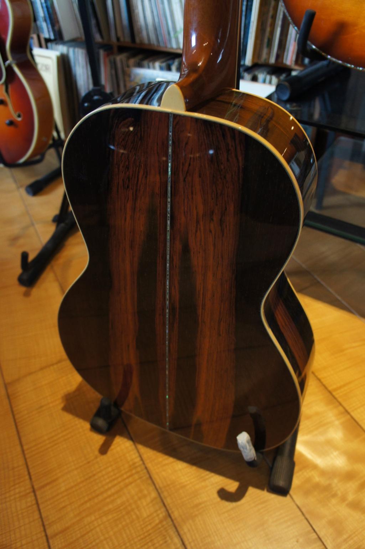 Projet guitare Cheval Dsc00224