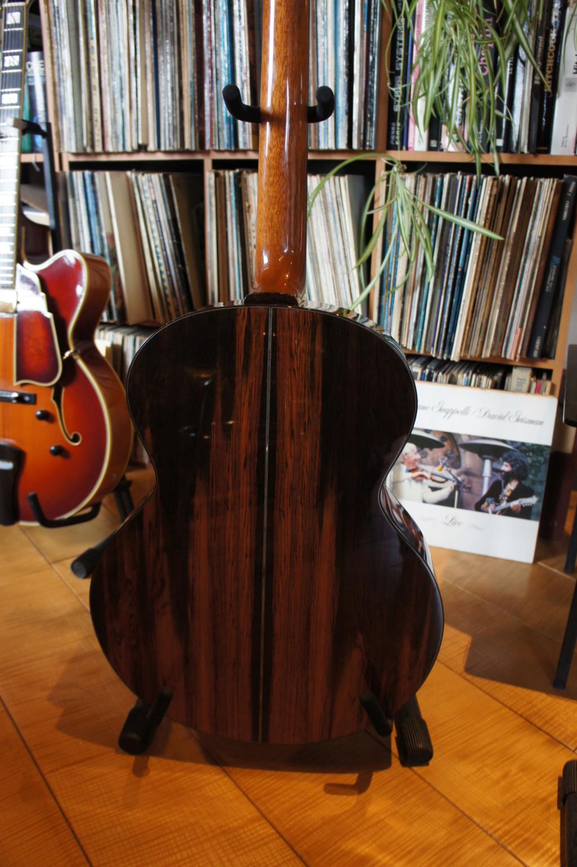 Projet guitare Cheval Dsc00228