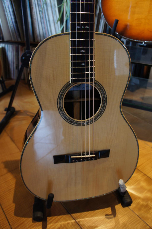 Projet guitare Cheval - Page 5 Dsc00229