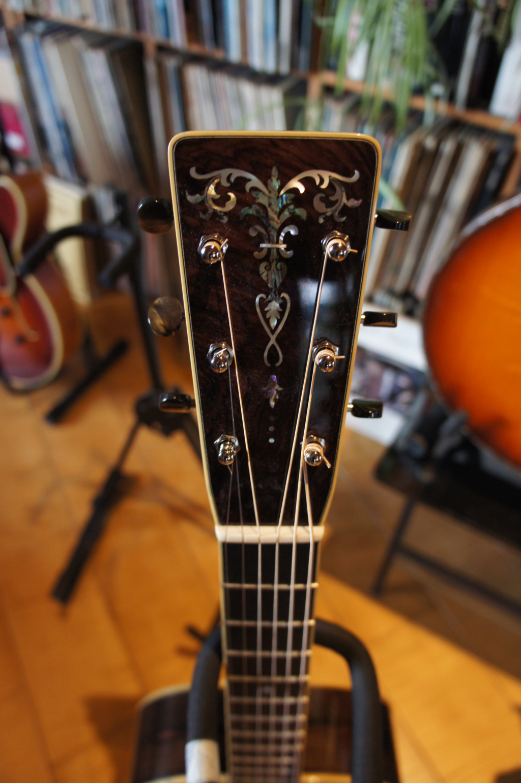 Projet guitare Cheval - Page 4 Dsc00231