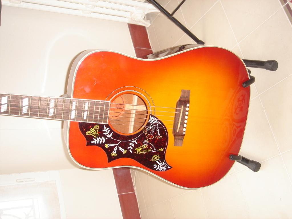 une Hummingbird  de 72 à 2200 €... Dsc02511