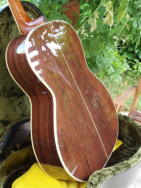 Projet guitare Cheval P1010611