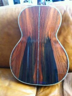 Projet guitare Cheval Photo210
