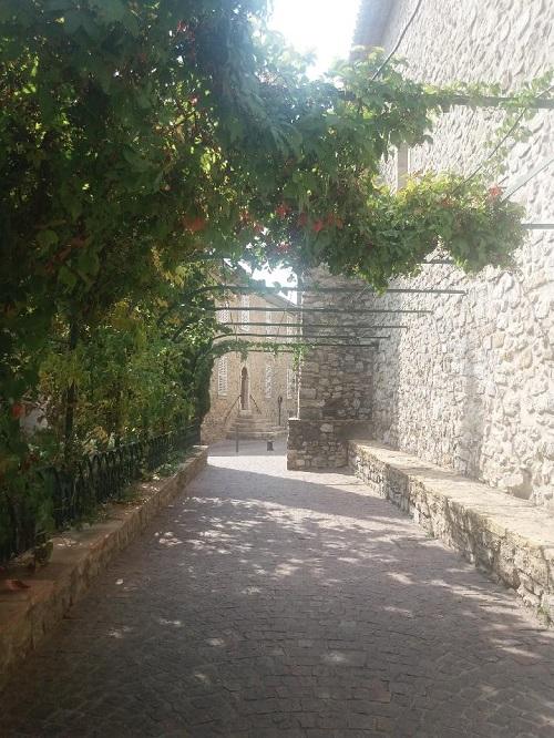 Le Jardin d'Iron Resiz105