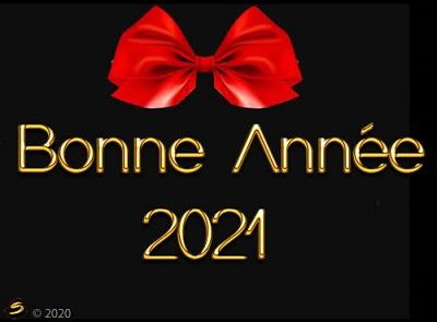 Bonne année 2O21 !  Voeuxb11