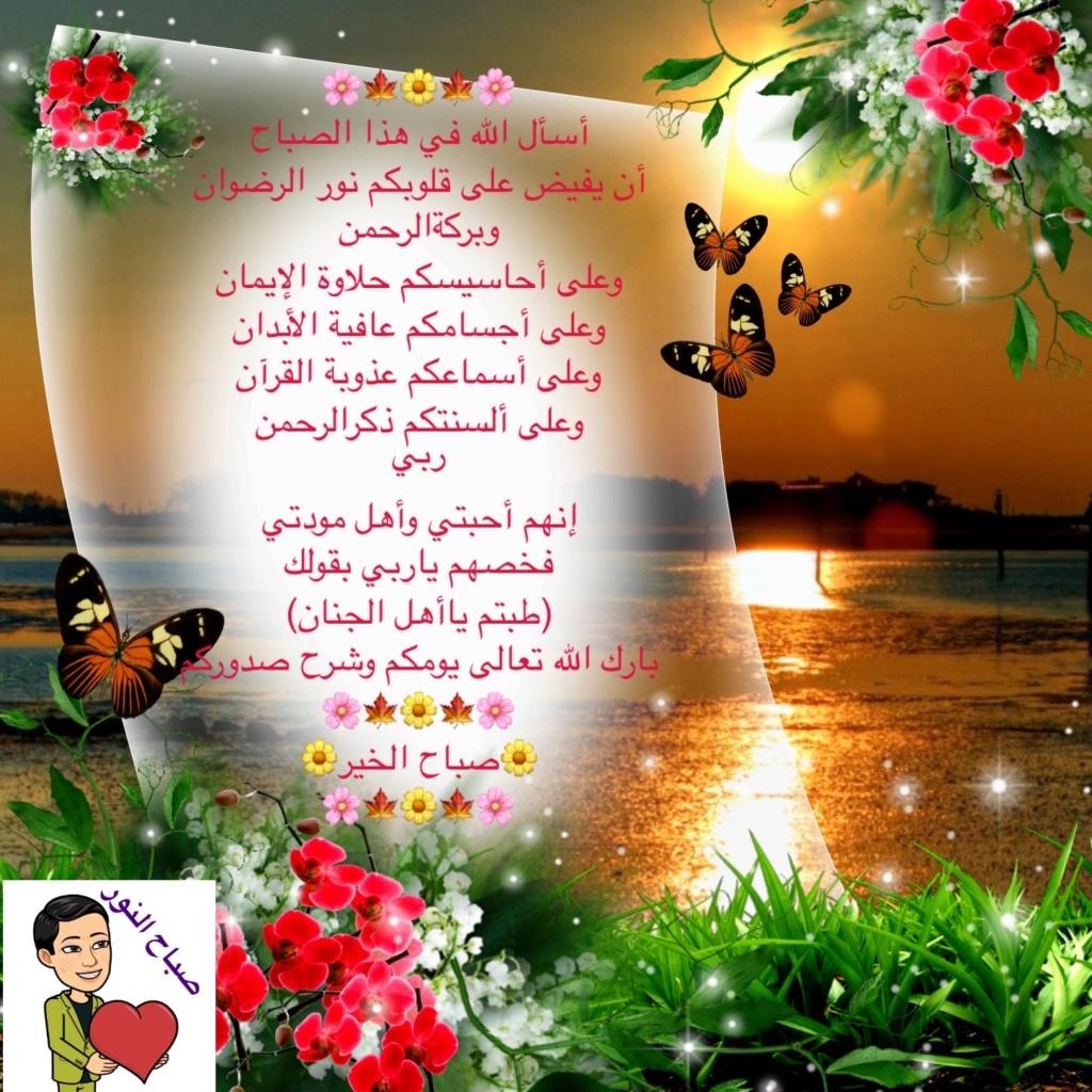 من هنا نقول صباح الخير - مساء الخير - زهرة اللوتس المقدسية  - صفحة 8 Img_5817
