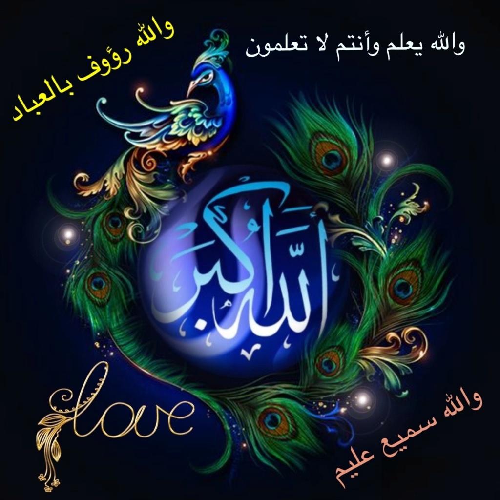 تعالو نسجل الحضور اليومي بكلمة في حب الله عز  وجل - صفحة 13 Img_8216