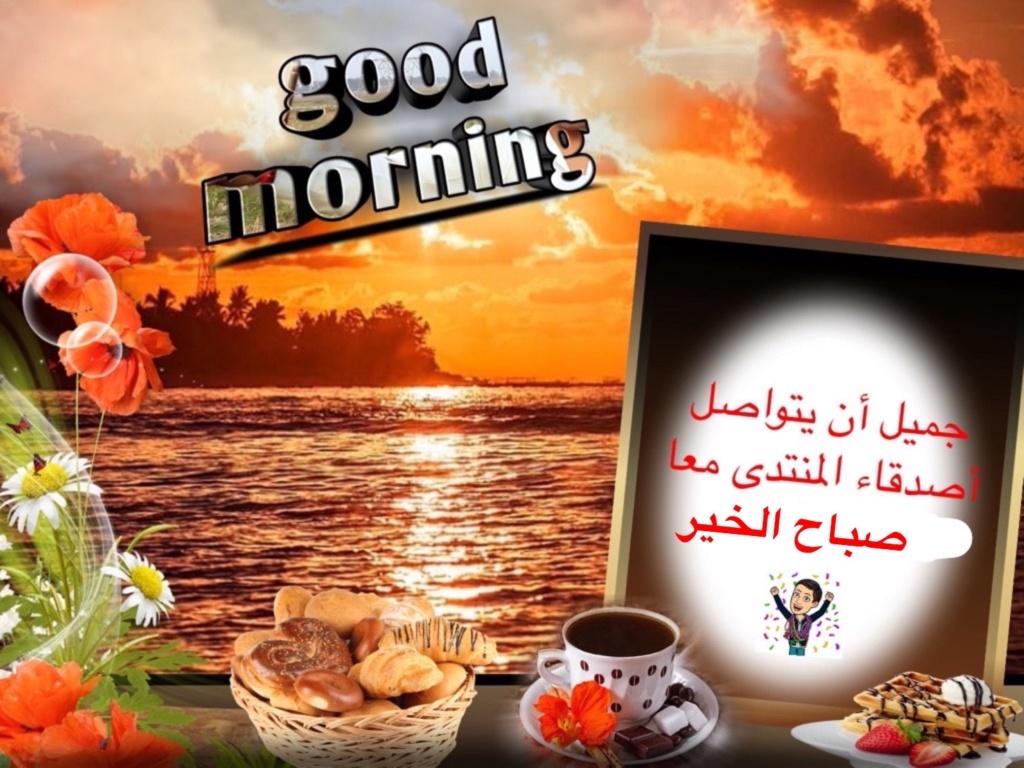 من هنا نقول صباح الخير - مساء الخير - زهرة اللوتس المقدسية  - صفحة 8 Img_8324