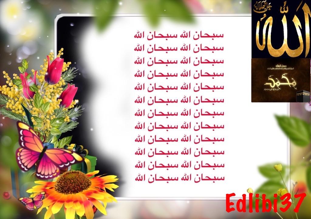 تعالو نسجل الحضور اليومي بكلمة في حب الله عز  وجل - صفحة 13 Img_8411