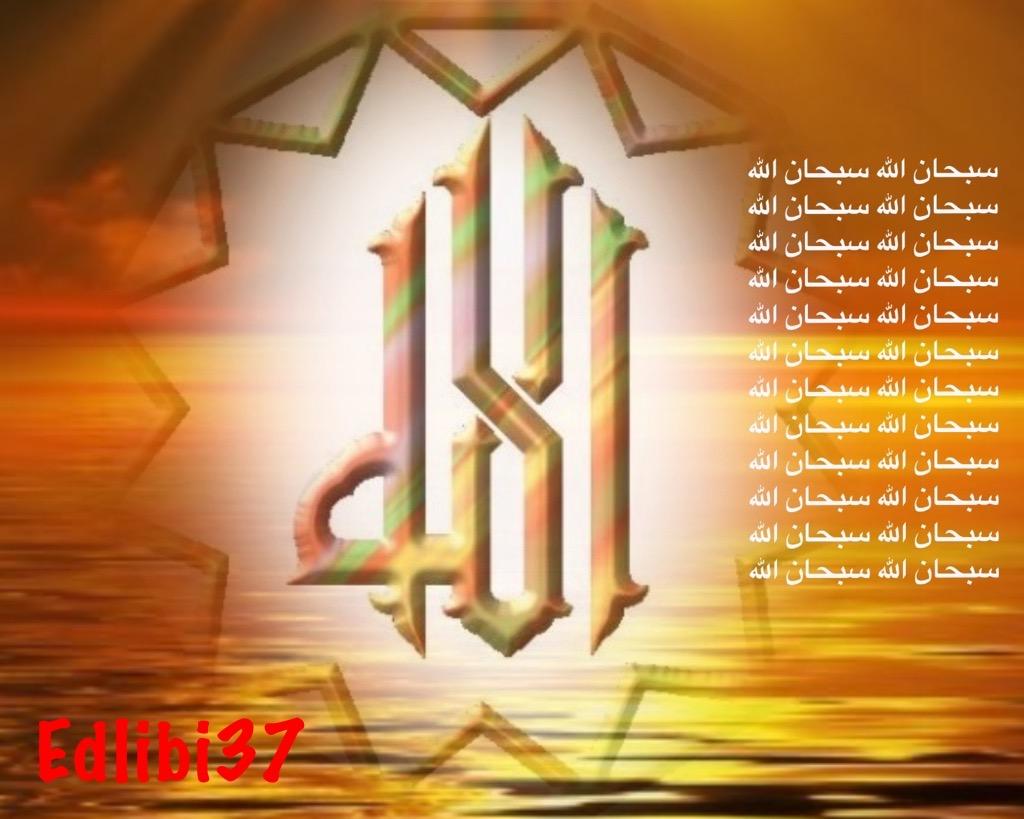 تعالو نسجل الحضور اليومي بكلمة في حب الله عز  وجل - صفحة 13 Img_8413