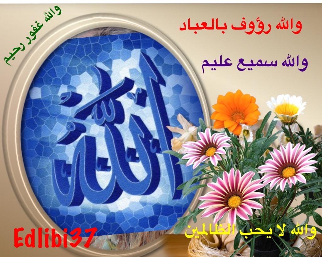 تعالو نسجل الحضور اليومي بكلمة في حب الله عز  وجل - صفحة 13 Img_8422
