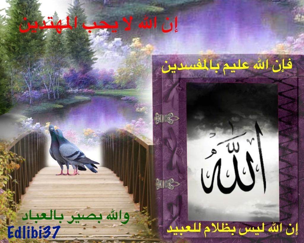 تعالو نسجل الحضور اليومي بكلمة في حب الله عز  وجل - صفحة 13 Img_8430