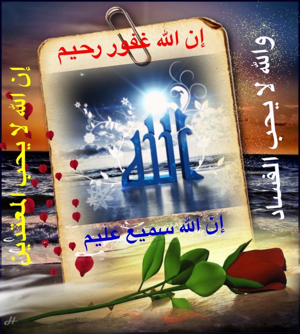 تعالو نسجل الحضور اليومي بكلمة في حب الله عز  وجل - صفحة 13 Img_8520