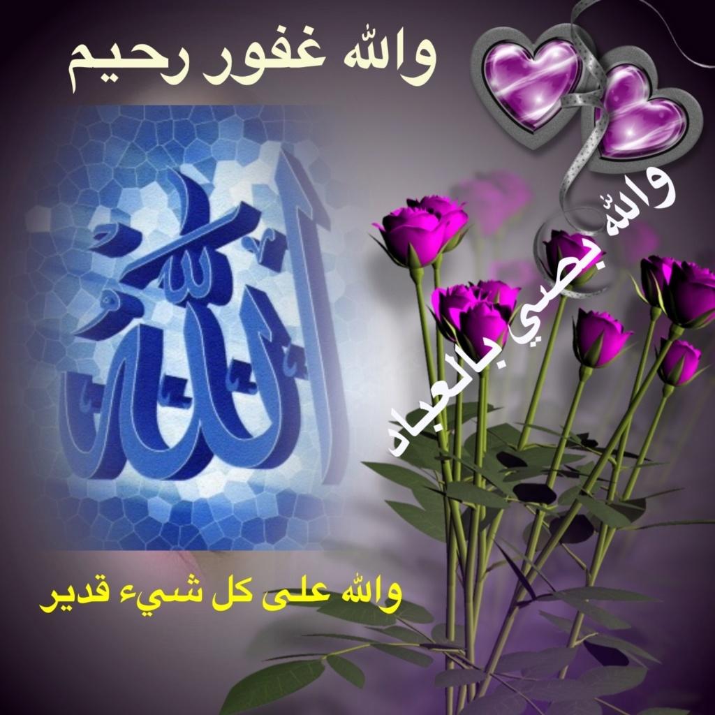 تعالو نسجل الحضور اليومي بكلمة في حب الله عز  وجل - صفحة 13 Img_8523