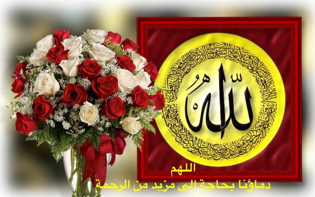 تعالو نسجل الحضور اليومي بكلمة في حب الله عز  وجل - صفحة 13 Img_8656