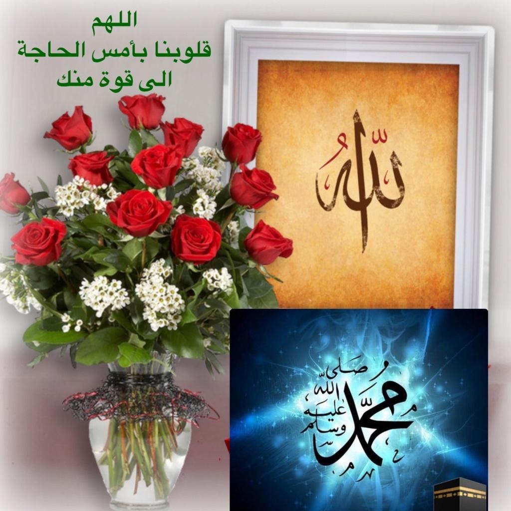 تعالو نسجل الحضور اليومي بكلمة في حب الله عز  وجل - صفحة 13 Img_8658