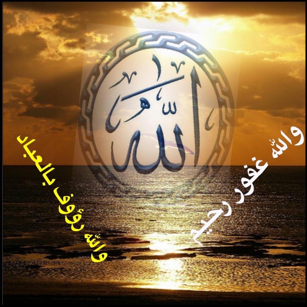 تعالو نسجل الحضور اليومي بكلمة في حب الله عز  وجل - صفحة 13 Img_8716