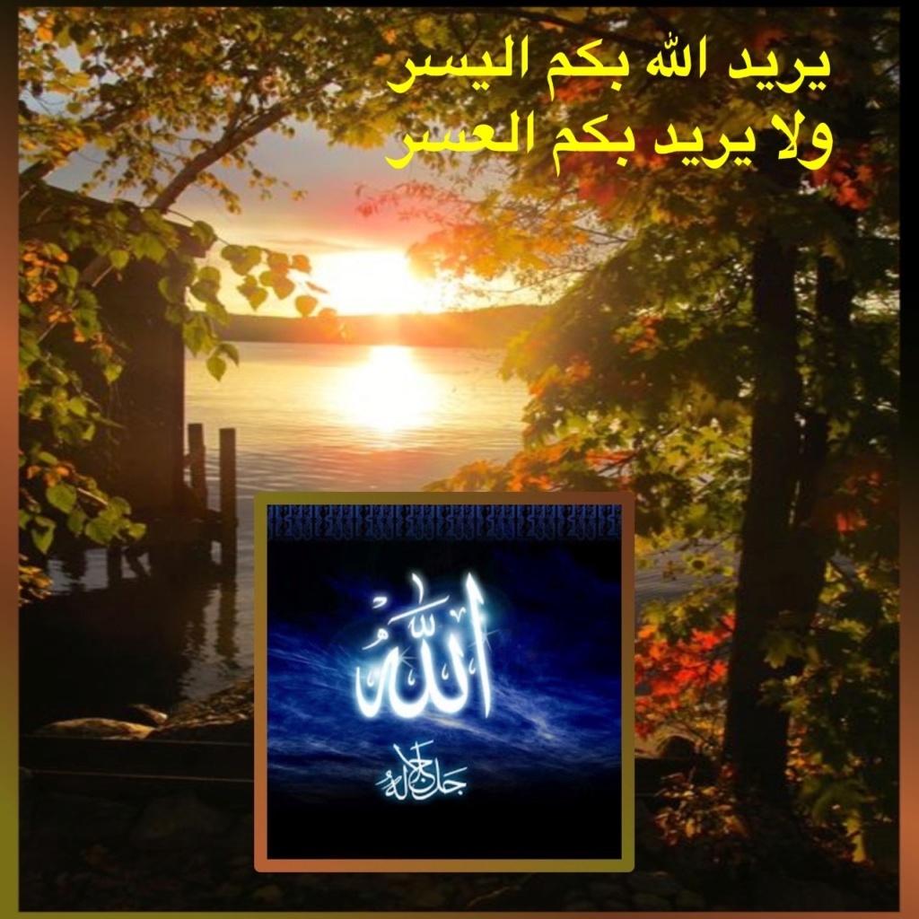 تعالو نسجل الحضور اليومي بكلمة في حب الله عز  وجل - صفحة 13 Img_8739