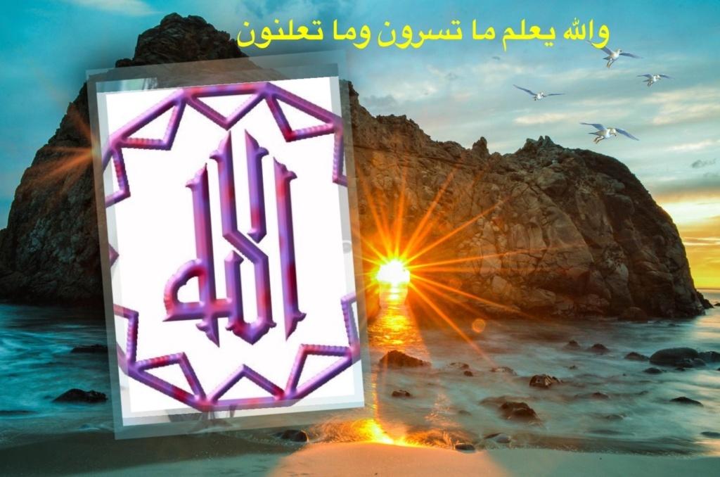 تعالو نسجل الحضور اليومي بكلمة في حب الله عز  وجل - صفحة 13 Img_8744