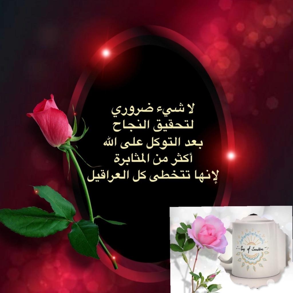 صباح الخير Img_8814