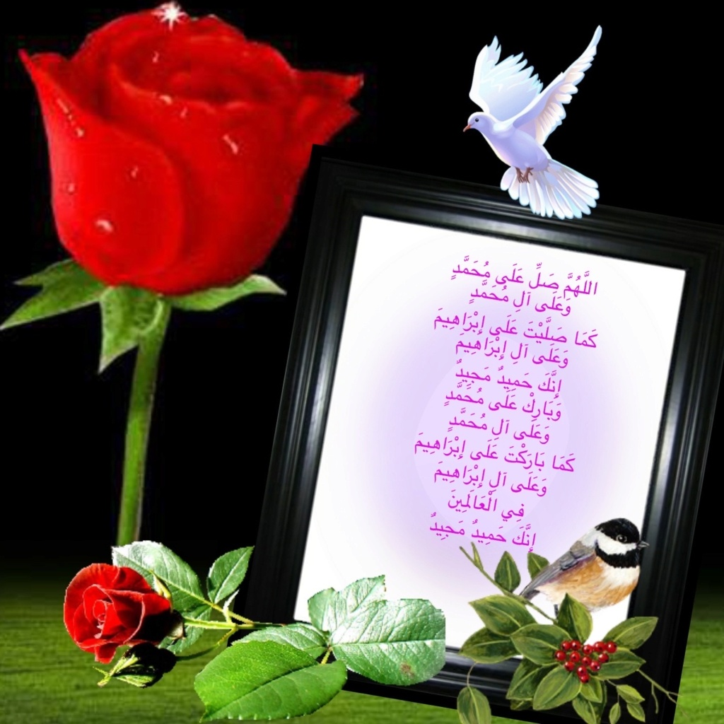 سجل حضورك اليومي بالصلاه على نبي الله  - صفحة 21 Img_9612