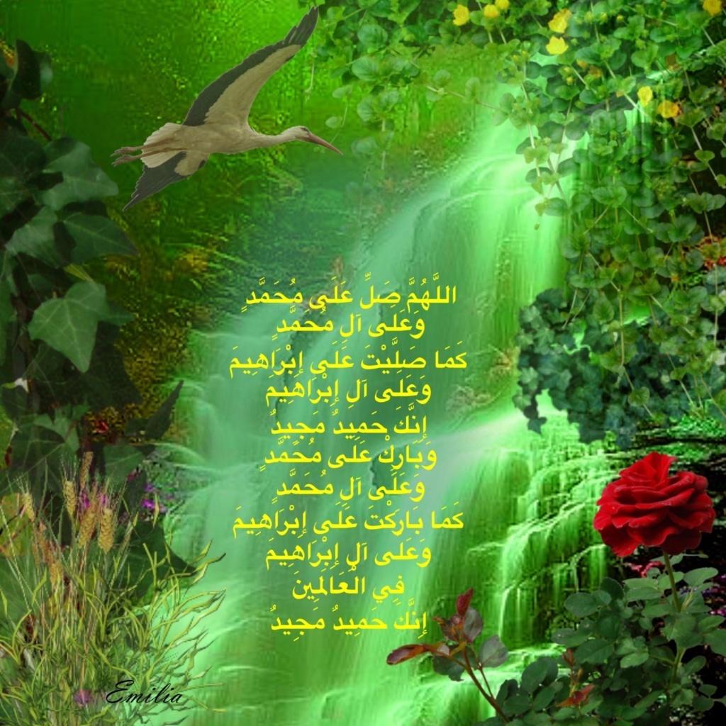 سجل حضورك اليومي بالصلاه على نبي الله  - صفحة 21 Img_9914