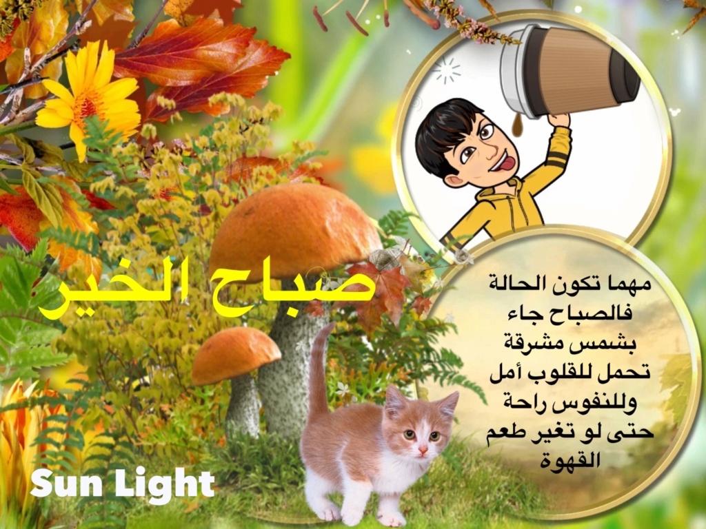 من هنا نقول صباح الخير - مساء الخير - زهرة اللوتس المقدسية  - صفحة 8 Img_9924