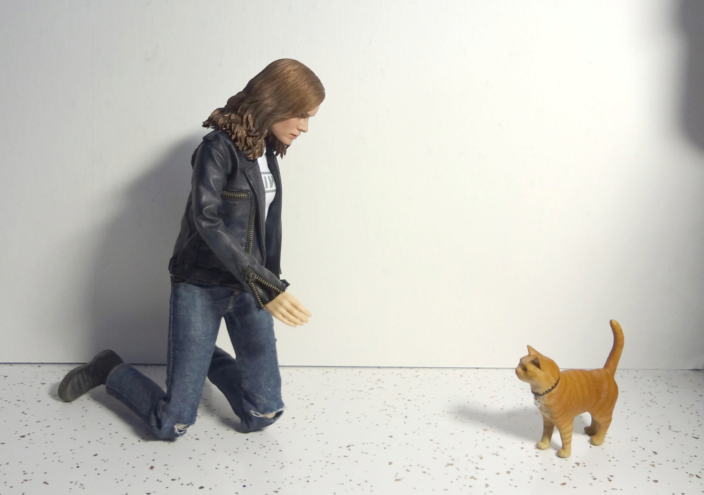 SWToys - NEW PRODUCT: Swtoys FS028 1/6 Scale Danvers figure Dsc00923