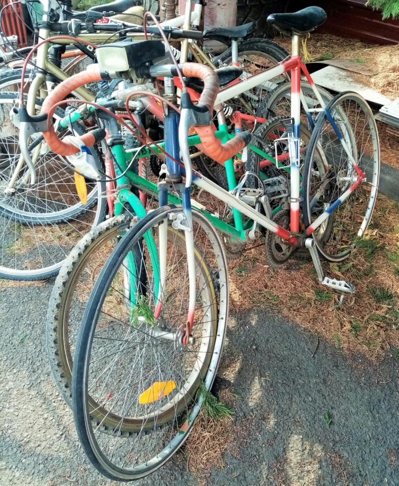 Cyclocross  tricolore 1978-79  01420