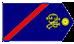 Guarda Provisório