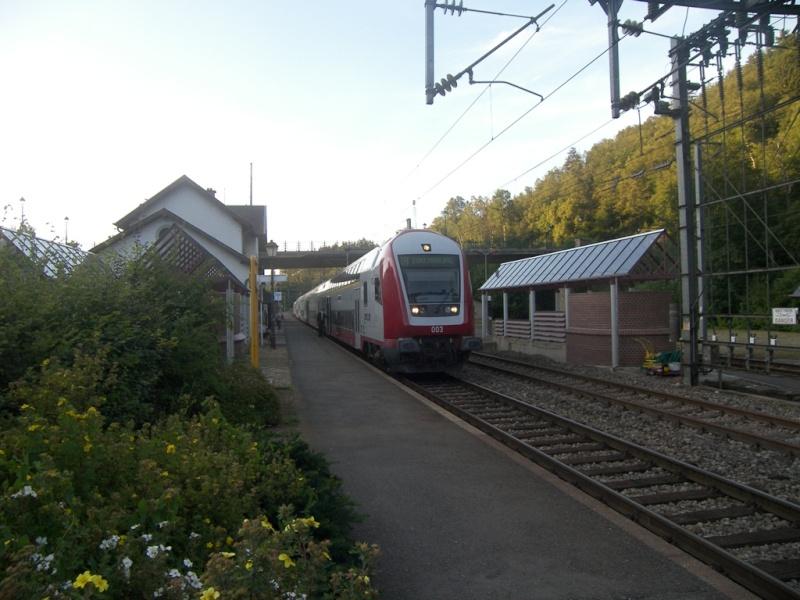 Mon réseau frontalier inachevé: Rabbeldange - Page 17 100_8310