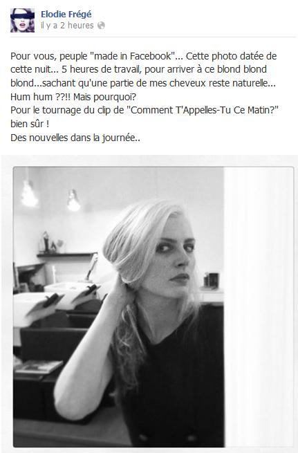 Messages d'Elodie Frégé sur Facebook (de Août 2013 à Avril 2014) Eererg11